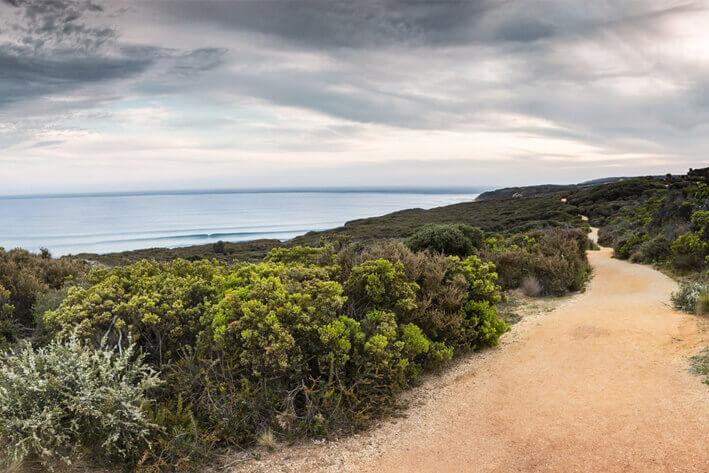 Surf Coast Track